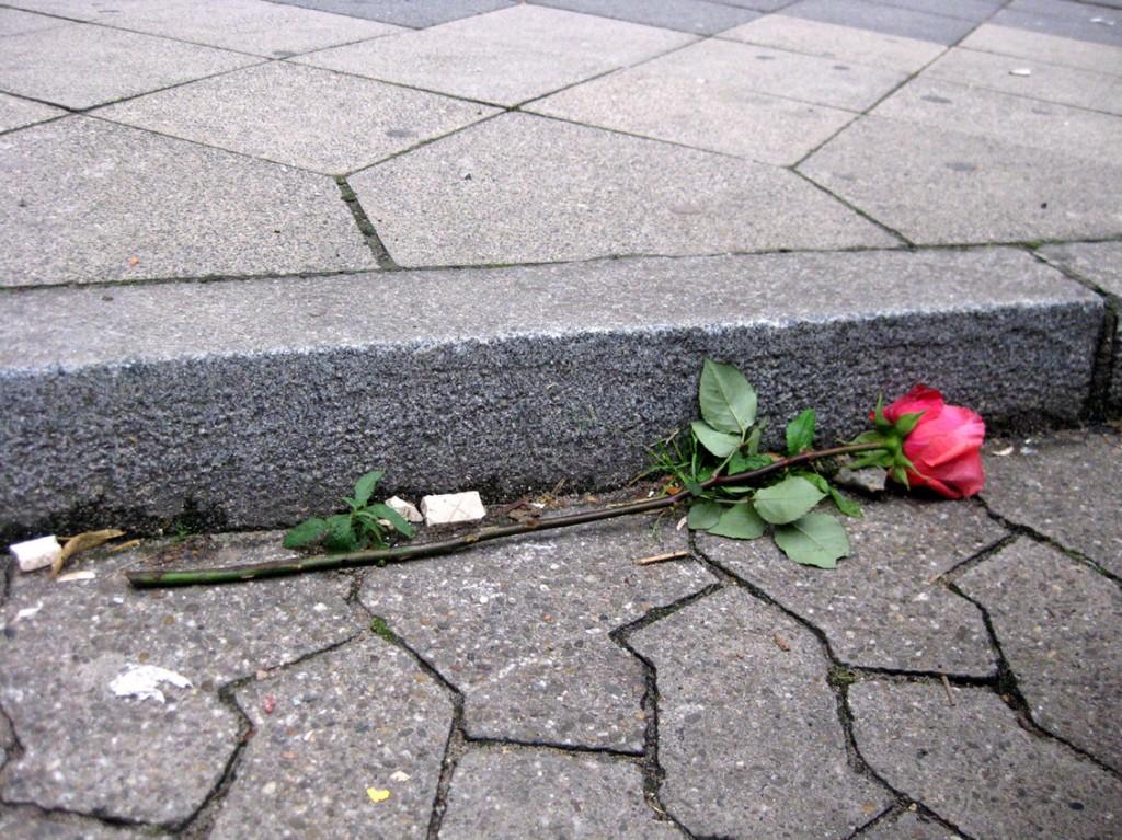 Moartea trandafirului
