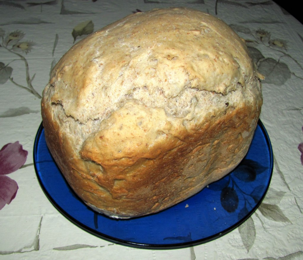 Prima paine